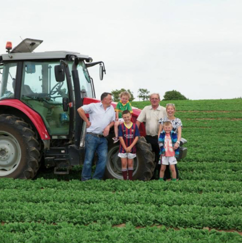 McCormack Family Farms